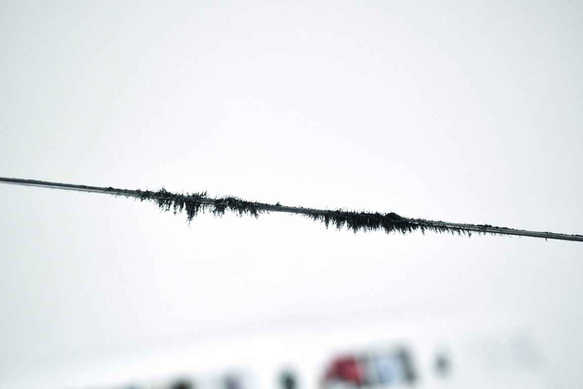 Iron Filings Clinging to Recording on Wire (photograph by Danielle Morgan)